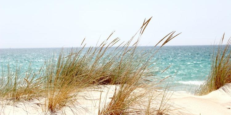 Tunisie : 23 plages seront interdites à la baignade cet été