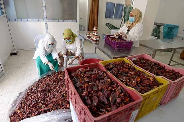 Des Tunisiennes préparent le piment rouge utilisé pour préparer la harissa, dans leur coopérative à Menzel Mhiri dans le centre de la Tunisie, le 13 juillet 2017 © FETHI BELAID AFP/Archives